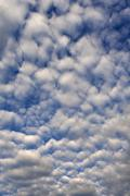 Large fleecy clouds altocumulus Bavaria Germany Europe Stock Photos