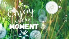 Enjoy every moment message. In retro colors. Stock Footage