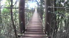 Suspension Bridge In Rainforest Stock Footage