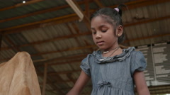 Young Indian Girl Playing with Sacred Cow Stock Footage