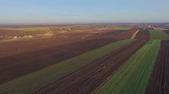 Aerial view of the Ukrainian fields Stock Footage