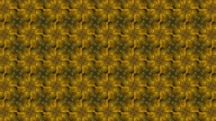 Abstract yellow kaleidoscope with flowery shade or shape - stock footage