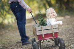 Loving Father Pulls Baby Girl in Wagon with Christmas Tree Outdoors. - stock photo