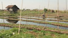 Inle Floating Gardens Stock Footage
