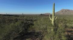 Into The Arizona Desert Stock Footage