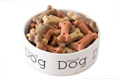 Bowl of dog food Stock Photos