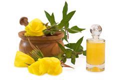 Evening primrose bath Stock Photos