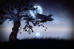Black ravens at night Stock Illustration