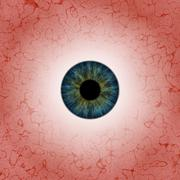 Eyeball - stock illustration