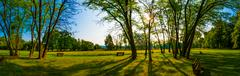 Park and recreation area in the city, Green field and tree Stock Photos