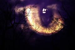 Stock Illustration of Scary monster's eye