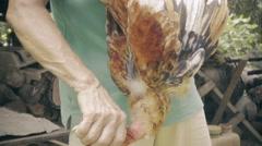 Farmer kill a chicken - stock footage