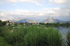 Reed at Lake Hopfsee in the Allgäu - stock photo