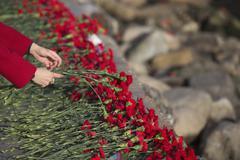 Carnation flowers symbol of mourning. Stock Photos