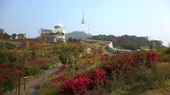 Namsan park in Seoul at autumn. South Korea. Stock Footage