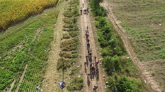 Aerial shot of refugees crossing at Hungarian - Serbian border Stock Footage