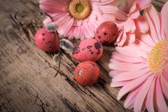 Easter eggs with gerbera daisy flowers - stock photo