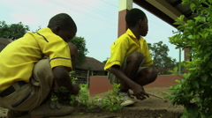 UP ANGLE: PAKRO STUDENTS PLANTING SHRUBS Stock Footage