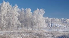 Rime landscape with birch trees and hills, slow panorama - stock footage