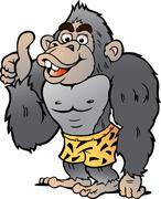 Vector Cartoon illustration of a Strong Gorilla giving Thumb Up - stock illustration