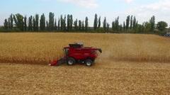 Dnepropetrovsk, Ukraine - October 4, 2015: huge red combine in the field corn in Stock Footage