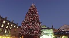 Around the Christmas Tree Stock Footage