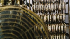 Stock Video Footage of Fish plant. Drying fish blowing a big fan