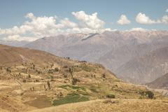 Colca canyon, Arequipa, Peru - stock photo