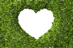 Green Leaves in heart shape on white background Stock Illustration