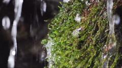 Stock Video Footage of torrent, creek, spill, water, rock, moss, musk, Gran Paradiso National Park,