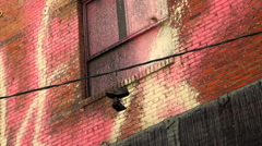 Sneakers hanging on powerline paint spattered building - stock footage