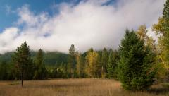 Time lapse clouds billow over a forest - Time Lapse 2015 HD, 4K Stock Footage