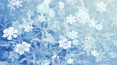 Snowflakes falling video background - Snowflakes 100 HD, 4K - stock footage