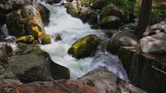 Yosemite stream water flowing over mossy rocks Stock Footage