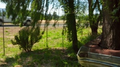 Real Goods Tree through car 2 - stock footage