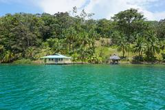 Waterfront property with tropical vegetation - stock photo