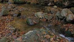 Mountain creek, rocks in water, fallen leaves, pan left through the forest. Stock Footage