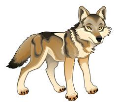 Stock Illustration of Wolf. Vector isolated character