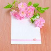 Old paper tied with ribbon and pink rose on wood background, closeup Stock Photos