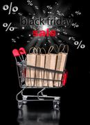 Concept of black friday shopping cart with paper bags percent is isolated on  Stock Photos