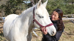 Woman takes care combing a white horse mane in horse riding club Stock Footage