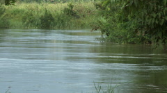 DENSU RIVER FLOWING BY Stock Footage