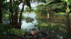 DENSU RIVER PAN: TRASH IN FOREGROUND Stock Footage