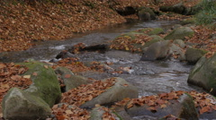 Small mountain river flowing and splashing big stones, shallow depth of field. Stock Footage