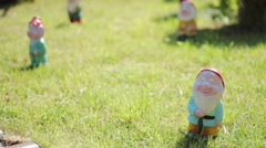 Garden gnome Stock Footage
