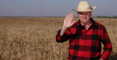Agriculture Industry Business Ripe Wheat Crop Farmland Owner Salute TV Camera Stock Footage