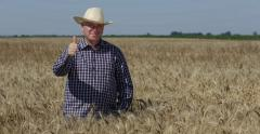 Homestead Confident Business Farmer Man Thumbs Up Gesture Great Wheat Harvest Stock Footage