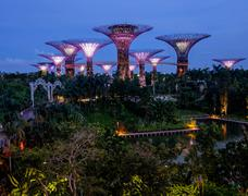 Stock Photo of Singapore - Nov 13: Amazing view of futuristic  illumination at Garden by the