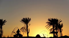 Silhouette Man Is Running Along Under the Palm At Sunset Stock Footage