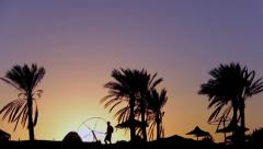Silhouette of a Traveler Man Walking Under Palm Trees at Sunset Stock Footage